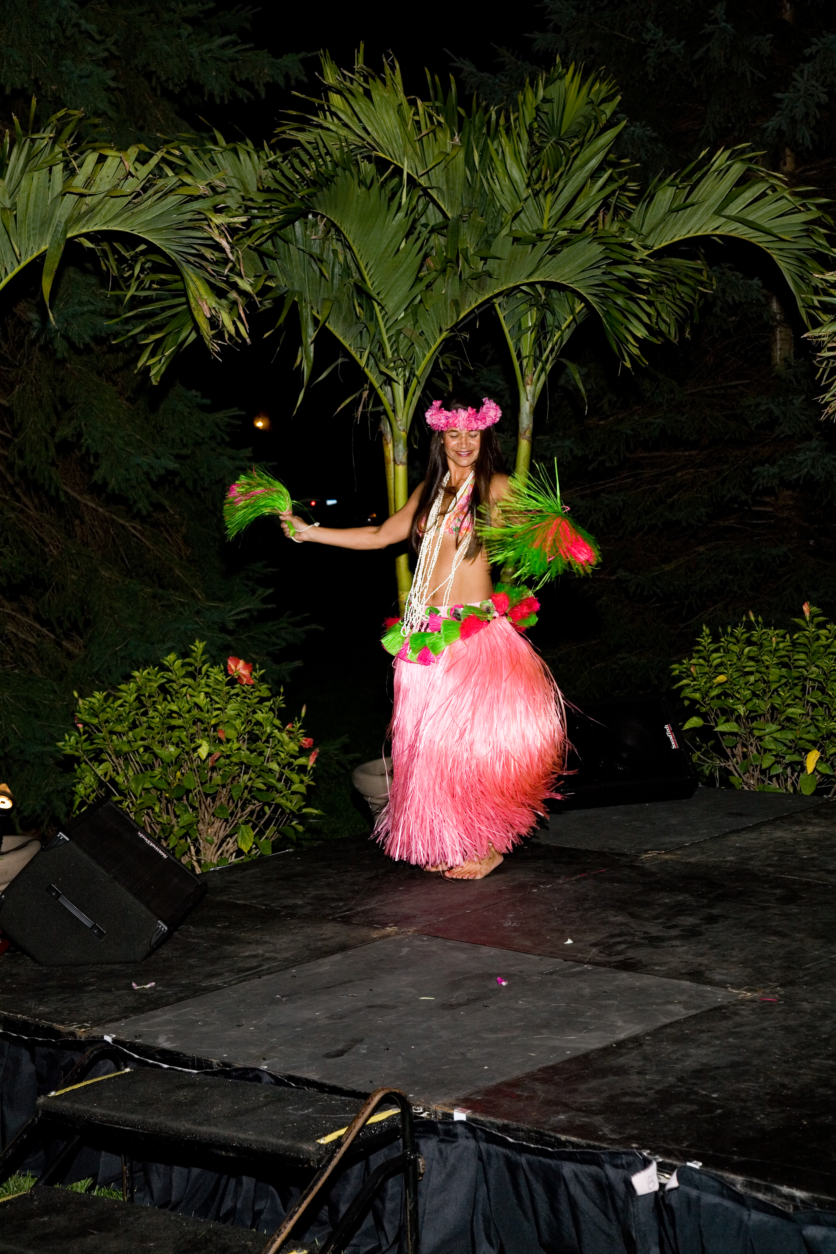 Entertainment_Luau